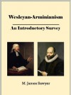 Wesleyan-Arminianism: An Introductory Survey (Christian Theological Traditions and Movements) - M. James Sawyer