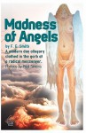 Madness of Angels - Franklin Smith, Paul Simons