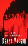 Trip to V-Town: A Short Horror Story - Drake Vaughn