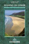 Walking on Gower - Andrew Davies