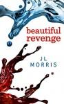 Beautiful Revenge - J L Morris