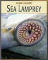 Sea Lamprey - Barbara A. Somervill