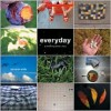 Everyday: A Yearlong Photo Diary - Byron Wolfe