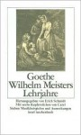 Wilhelm Meisters Lehrjahre (Turtleback) - Johann Wolfgang von Goethe