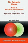 The Enigmatic Photon: Volume 2: Non-Abelian Electrodynamics - Myron Evans, Jean-Pierre Vigier