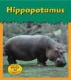 Hippopotamus - Patricia Whitehouse