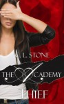 Thief: The Scarab Beetle Series: #1 (The Academy) - C.L. Stone