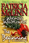 Wyoming Wildflowers: The Beginning (A Novella) - Patricia McLinn