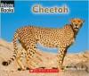 Cheetah - Edana Eckart