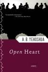 Open Heart - Abraham B. Yehoshua, Dalya Bilu