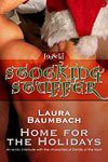 Home for the Holidays - Laura Baumbach