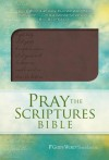 Pray the Scriptures Bible - Kevin Johnson