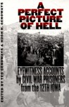 A Perfect Picture of Hell: Eyewitness Accounts by Civil War Prisoners from the 12th Iowa - Ted Genoways, Ted Genoways