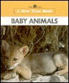 Baby Animals - Illa Podendorf