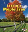 Look at a Maple Tree - Patricia M. Stockland, Catherine Ferne