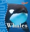 Whales - Dan Greenberg, Nina Hess