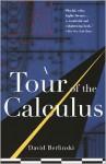 A Tour of the Calculus - David Berlinski