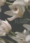 Flower - Lynn Goldsmith, Donald Sultan
