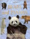 Bears and Pandas - Michael Bright