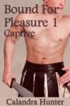 Bound For Pleasure 1: Captive - Calandra Hunter