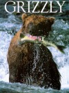 Grizzly - Michio Hoshino