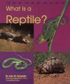 What Is a Reptile? - Lola M. Schaefer