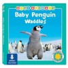 Baby Penguin Waddles - Laura Gates Galvin