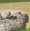 Rattlesnakes (First Facts) - Joanne Mattern