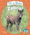 It's a Baby Zebra! - Kelly Doudna