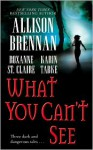 What You Can't See (Includes: Bullet Catcher, #5; Seven Deadly Sins Prequel) - Allison Brennan, Roxanne St. Claire, Karin Tabke