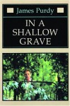 In a Shallow Grave - James Purdy
