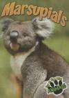 Marsupials - Jeanne Sturm