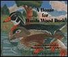 A House for Wanda Wood Duck - Patricia Barnes-Svarney, Dominic Catalano