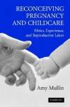 Reconceiving Pregnancy and Childcare: Ethics, Experience, and Reproductive Labor - Amy Mullin