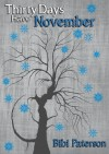 Thirty Days Have November (Thirty Days, #2) - Bibi Paterson