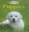 Puppies - Jim Pipe