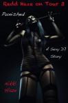 Punished - Nikki Haze