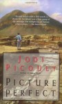 Picture Perfect (Audio) - Jodi Picoult