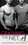 Crashing the Net - Samantha Wayland