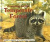 Counting in the Temperate Forest - Fredrick L. McKissack, Lisa Beringer Mckissack