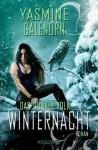 Das dunkle Volk: Winternacht: Roman (Knaur TB) (German Edition) - Yasmine Galenorn, Kerstin Winter