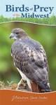 Birds of Prey of the Midwest - Stan Tekiela