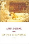 So Vast the Prison - Assia Djebar, Betsy Wing