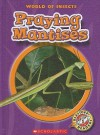 Praying Mantises - Colleen Sexton