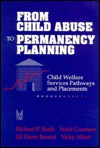 From Child Abuse to Permanency Planning: Child Welfare Services Pathways and Placements - Vicky Albert, Richard Barth, Mark Courtney, Jill Berrick