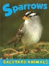 Sparrows - Christine Webster