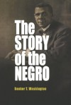 The Story of the Negro: The Rise of the Race from Slavery: Volumes I and II - Booker T. Washington
