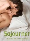Sojourner - Anthony Beal