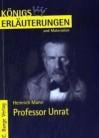 Erläuterungen Zu Heinrich Mann: Professor Unrat - Winfried Freund, Heinrich Mann