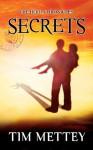 Secrets: The Hero Chronicles (Volume 1) - Tim Mettey